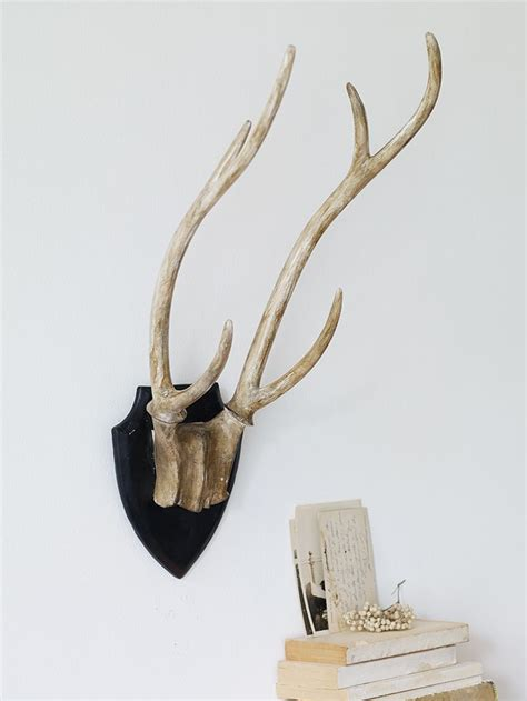 decorative antlers decorative deer antlers new work space pinterest