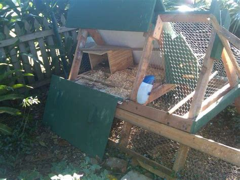 a frame chicken coop plans chicken coop plans insteading