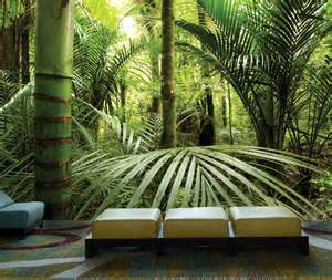 pics photos tropical rainforest mural rens wall murals rain forest wall mural amp photo wallpaper photowall
