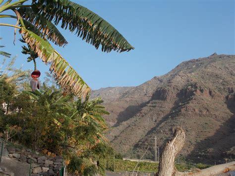 canarie turisti per caso montagne su gran canaria viaggi vacanze e turismo