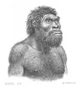 pics for gt homo erectus drawing