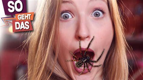 spinnen essen im schlaf so viele spinnen schluckst du im schlaf trailerseite tv