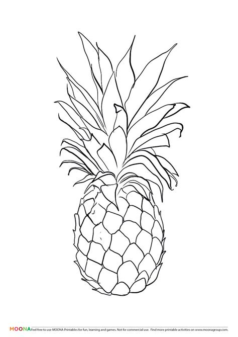 pineapple template free printable coloring pages for toddlers and