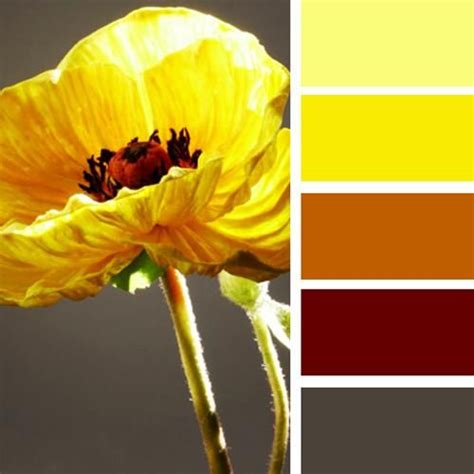 yellow color schemes 17 best ideas about yellow color schemes on pinterest colour schemes color schemes and gray