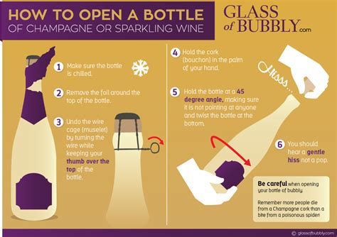 How Of Free Chagne Sparkling Wine Infographics Glass Of Bubbly