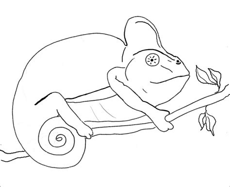 coloring pages of camouflage animals best photos of camo leaf coloring pages preschool leaf