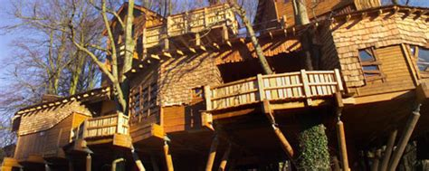 world s biggest tree house the world s largest treehouse for 7 million
