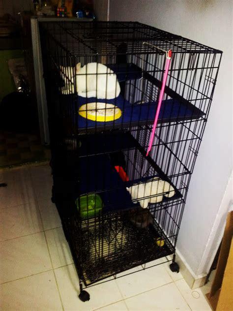 So Khusus Kucing kisahku sangkar kucing 3 tingkat