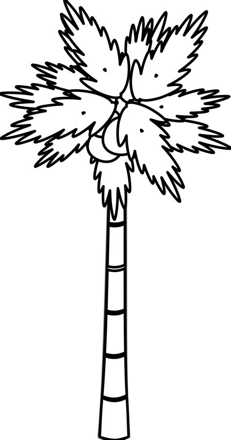 tree clipart black and white palm tree clip black and white clipart panda free