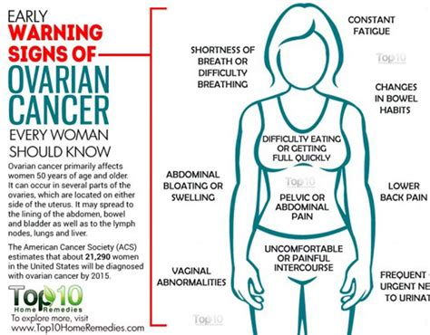 Does Shower To Shower Cause Ovarian Cancer by At Risk Of Ovarian Cancer And Bacterial Vaginosis Health Style