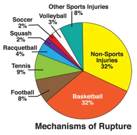 epidemiology of achilles tendon rupture in the us lower