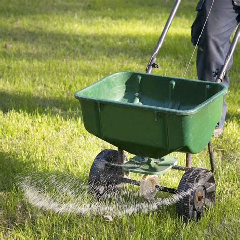 early spring lawn care neil sperry s notes