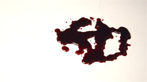 a pool of blood on the floor blood drips stock footage