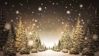 Christmas trees in snow hd wallpaper 187 fullhdwpp full hd wallpapers