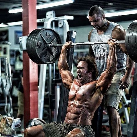 mike o hearn bench press is mike o hearn natural or on steroids