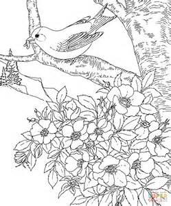 printable coloring pages of birds and flowers coloriage chardonneret jaune de l iowa coloriages 224