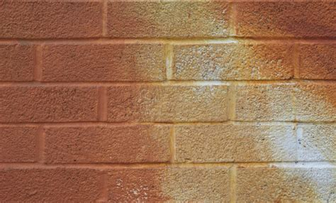 painted brick wall www imgkid the image kid has it