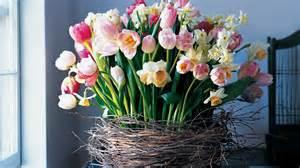 Martha Stewart Decorations by Mla103219 0408 Birch Tulip Horiz Jpg