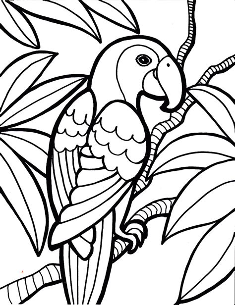 coloring book pages pinterest bird printable coloring page 1000 images about coloring