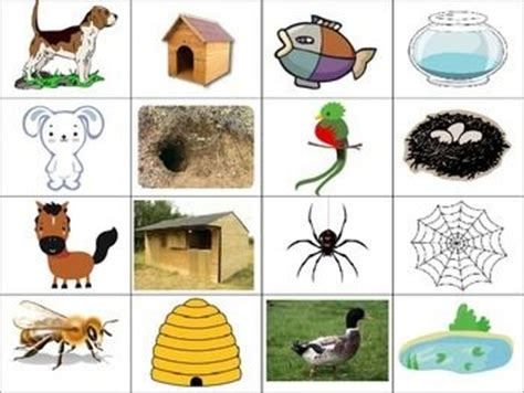 printable animal habitat matching game 93 best images about math on pinterest
