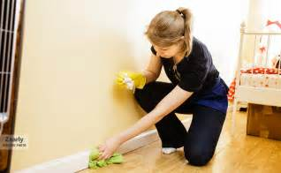 what is cleaning housemaid services alassia