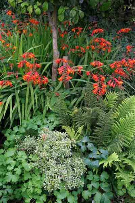planting plans the weatherstaff blog intelligent garden design software for creating bespoke