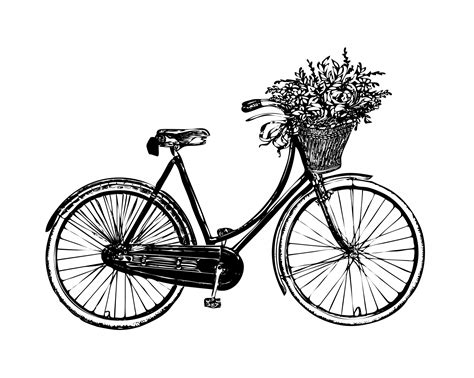 vintage clipart bicycle flowers vintage clipart free stock photo public