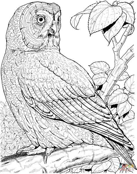 owl butterfly coloring page dibujo de gran b 250 ho lap 243 n o b 250 ho gris para colorear
