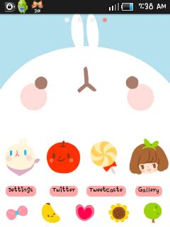 cute themes for samsung galaxy y lovely like blossom cute theme samsung galaxy mini