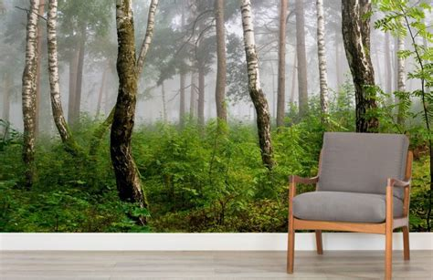 forest room latvian forest wall mural muralswallpaper co uk
