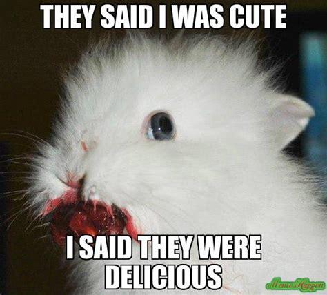 Angry Bunny Meme - angry bunny meme 02 jpg 600 215 543 bunnies pinterest