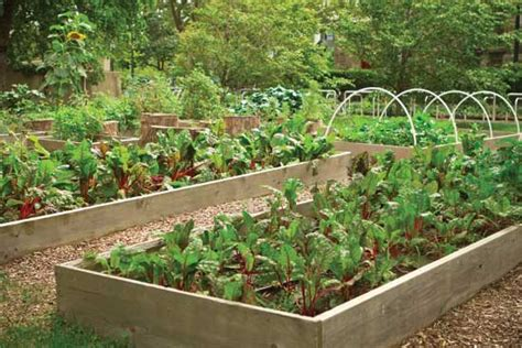 Gardening For Profit Vegetable Gardening For Profit Farm And Garden Grit