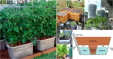 15 Diy Self Watering Planters That Make Container Diy Self Watering Planter