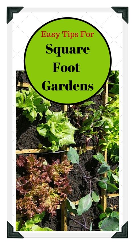 square foot vegetable garden layout square foot vegetable garden layout