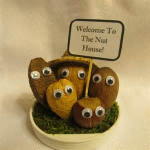 welcome to the nut house nut by kellystreasures1 on
