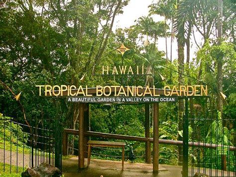 top 5 favorite hikes big island hawaii