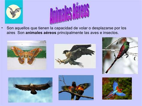 100 ejemplos de animales terrestres y acuticos los animales