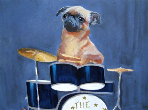 pugs and drummers 13 best images about pug x griffon on coats week and smooth