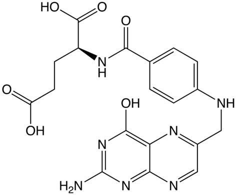 alimenti ricchi di acido folico e vitamina b12 acido folico carenza sintomi e soluzioni