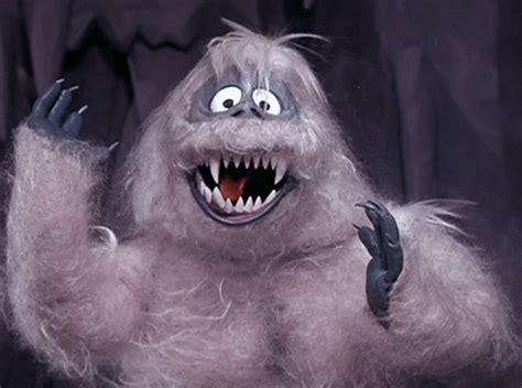 It s a bird it s a place it s yeti spotted roaming the