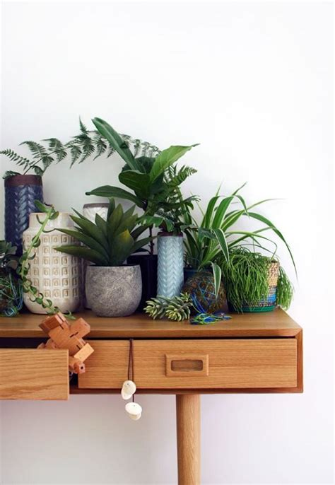 indoor small plants 33 creative ways to include indoor plants in your home