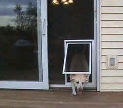 Sliding Patio Storm Door Security Boss Pet Screen Door