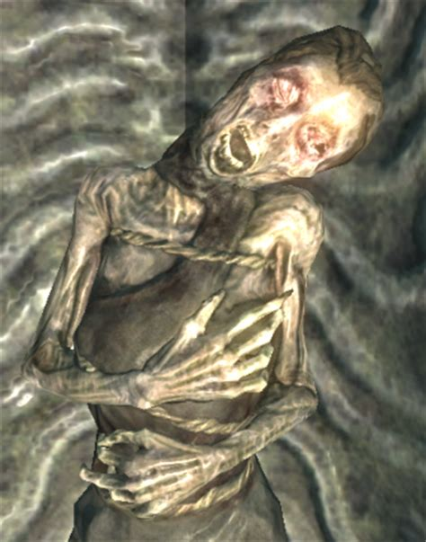 Skyrim Night Mother   skyrim misadventures iv why can t i ever have nice things