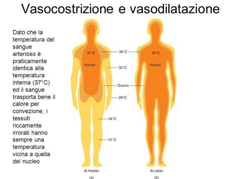 temperatura interna corporea fisiologia applicata agli ambienti di lavoro ppt scaricare