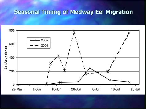 Seasonal Timing by Ppt Upstream And Downstream Passage Of American Eels At