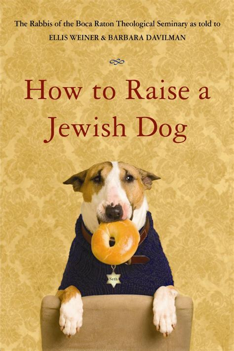 how to raise a puppy oy velo how to raise a