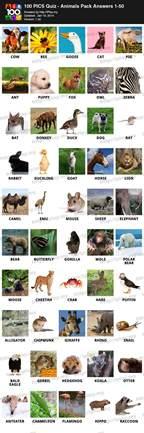 animal quiz 100 pics animal planet answers 100 pics answers holidays oo