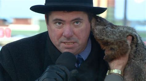 groundhog day jimmy after notorius nibble sun prairie s groundhog day plans