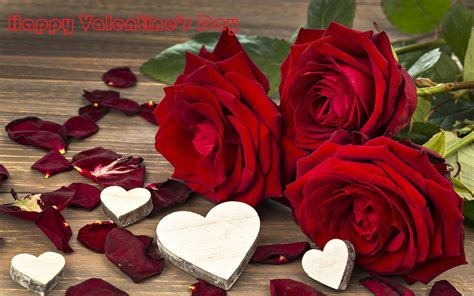 Valentines Day Roses by S Day Roses Hd Wallpapers Free