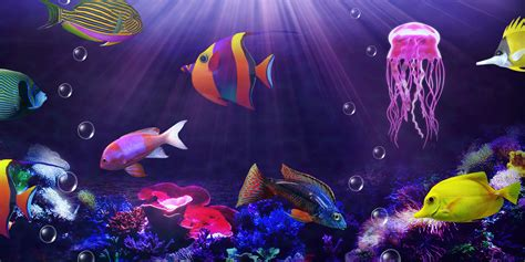aquarium live wallpaper hd for android youtube aquarium live wallpaper android apps on google play